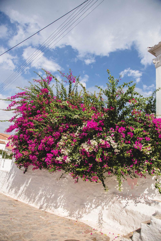 Travel Photography Greece Hydra 025