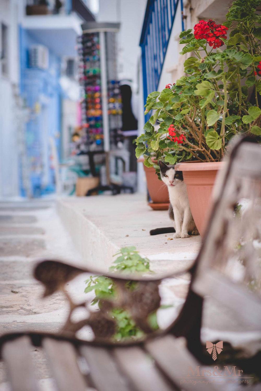 Travel Photography Greece Tzia 003